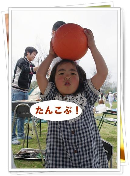 20120415_12_16_44_0040