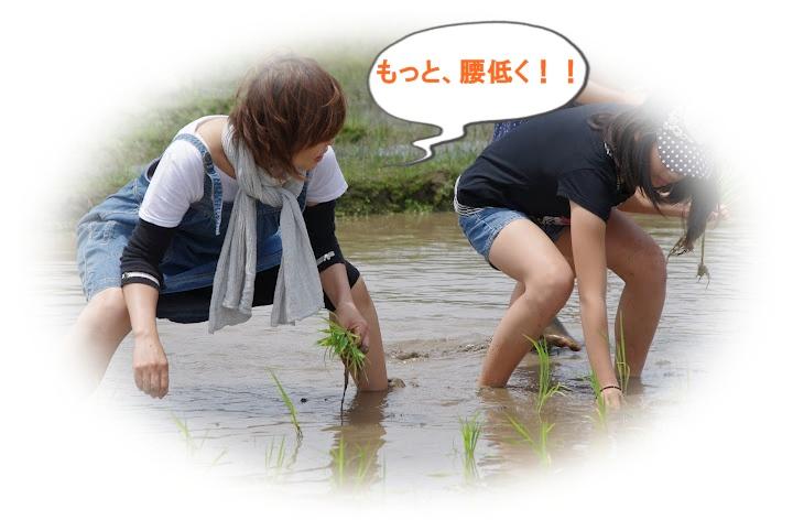 20120617_11_08_41_0031