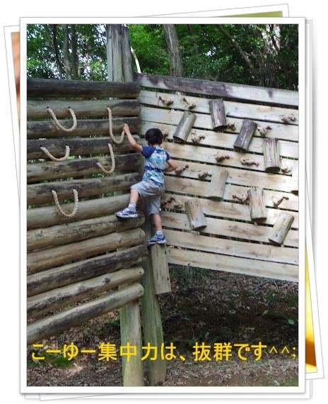20120623_16_16_53_0045