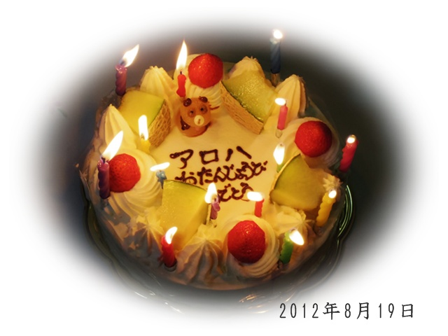 20120819_180021_0027