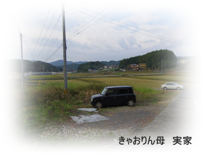 20121104_083704_0090